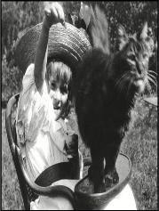 icône la petite fille et le chat